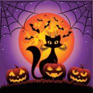 Хэллоуин в котокафе «Мурчашка»